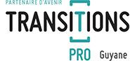 TRANSITION PRO